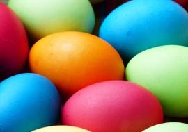 egg-100165_960_720